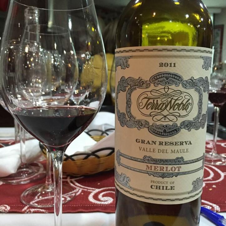 Vinho Terranoble 4