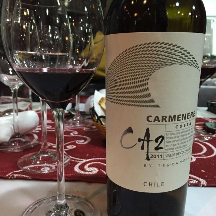 Vinho Terranoble 5