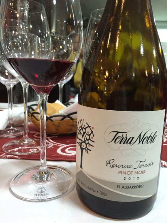 Vinho terranoble 3