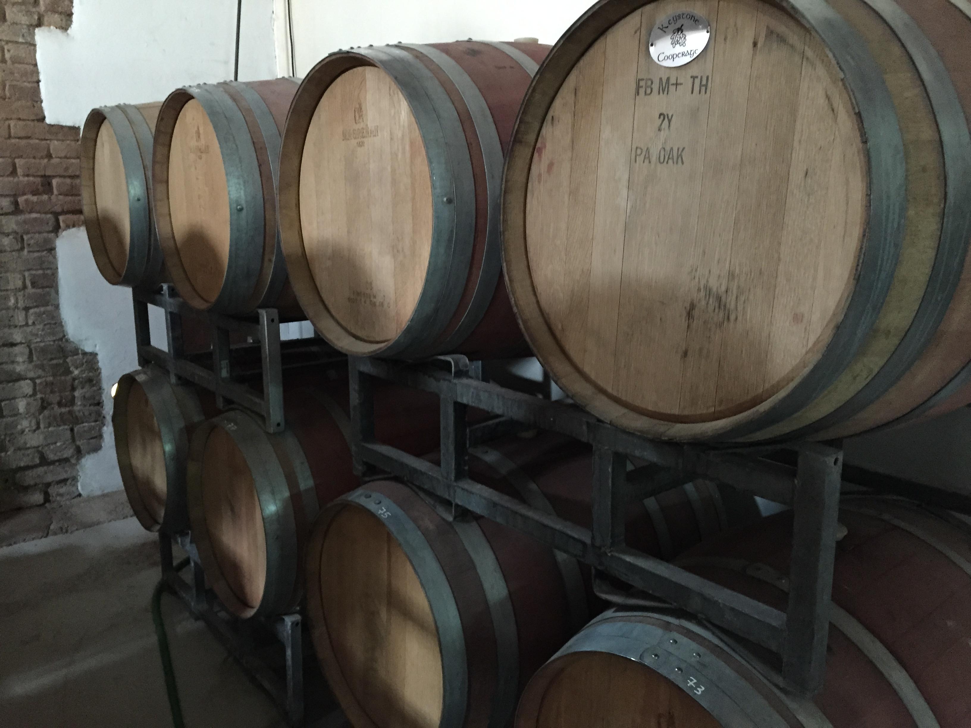 Bodega Cecchin Vinhos Orgânicos 6